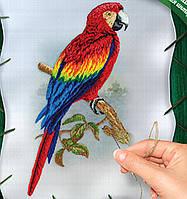 Вышивка гладью на холсте Попугай, VGL-01-01