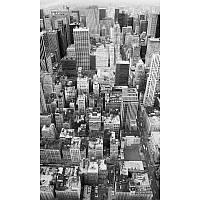 Фотообои Komar Над городом черно-белые XXL2-021