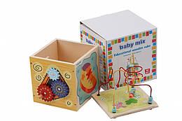 Детская игрушка Baby Mix Деревянный сортер Лабиринт HJ-D931063