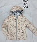 Куртка для дівчаток Lemon Tree оптом, 3/4-7/8 років. Артикул: 2940