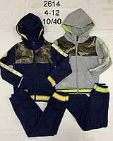 Трикотажный костюм-двойка для мальчиков F&D оптом, 4-12 лет. Артикул: WX2614