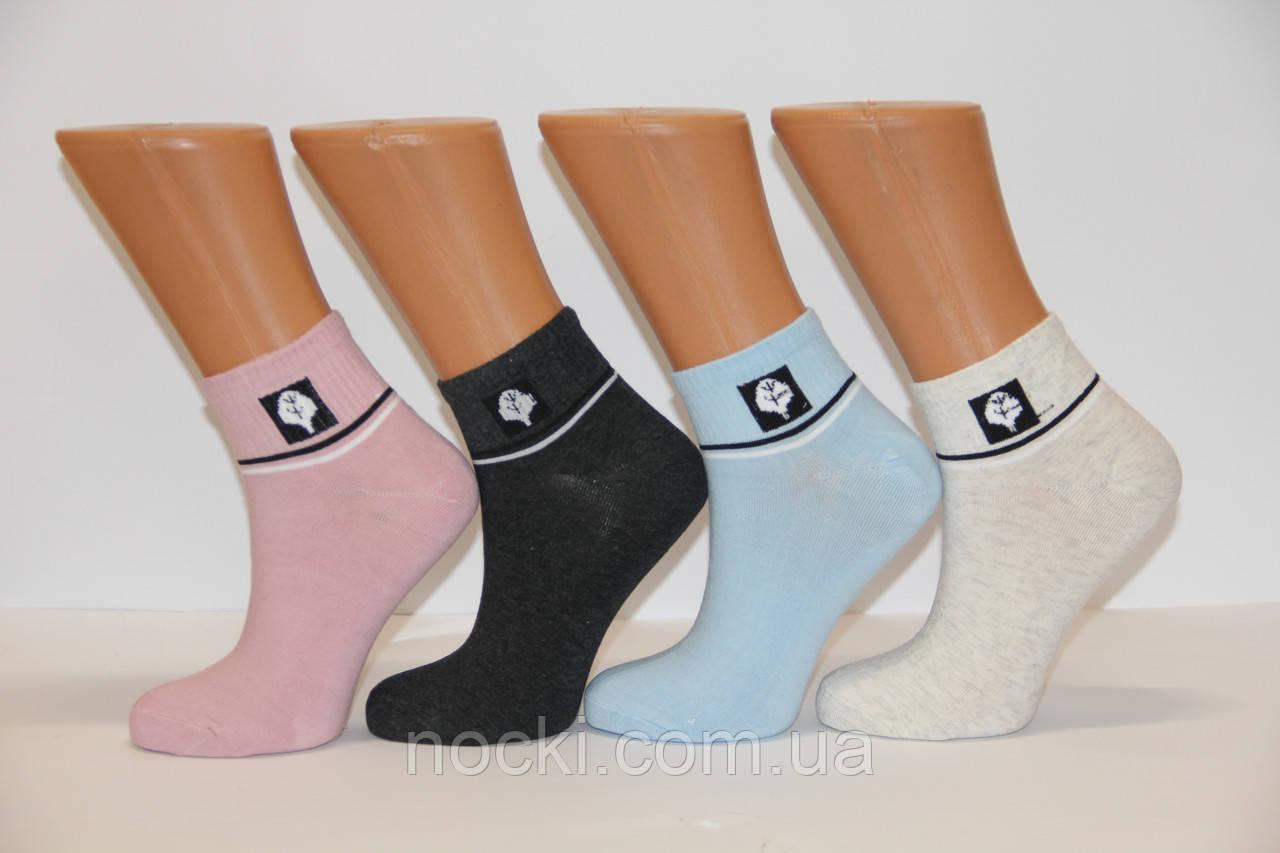 Женские носки короткие 21-4