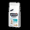 Advance (Эдванс) Dog Maxi Puppy корм для щенков крупных пород с курицей и рисом 18 кг