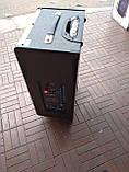 Портативна колонка з мікрофонами Feiyang QX-1208 250W (USB/Bluetooth/Пульт ДУ), фото 4