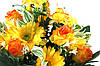 Троянда з ромашкою два кольори 16 голів, фото 6