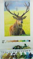 Печать на вышив.ткани 20х30см с мулине(149) уп=1шт