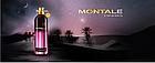Парфюмированная вода Лицензия Montale Starry Nights (Унисекс) 100 мл, фото 6