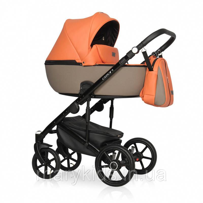 Детская универсальная коляска 2 в 1 Riko Ozon Ecco 24