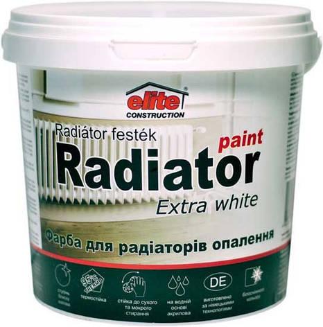 Краска для радиаторов отопления Дивоцвет 1кг, фото 2