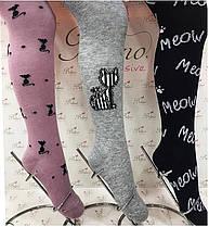 Колготки хлопковые для девочек р.7-8 лет (122-128 см) Belino 5489629730006