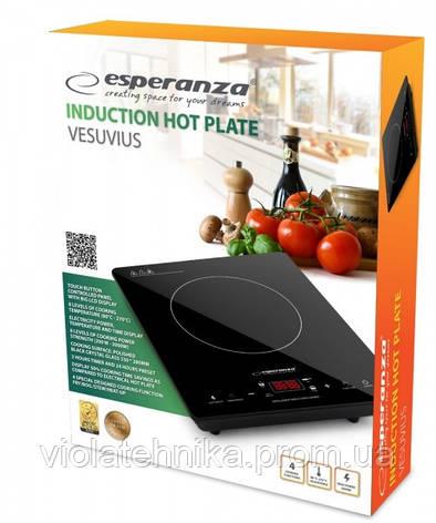 Индукционная плита Esperanza Vesuvius EKH006, фото 2