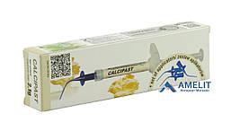 Кальципаст Серкамед (Calcipast, Cerkamed), шприц 2.5г