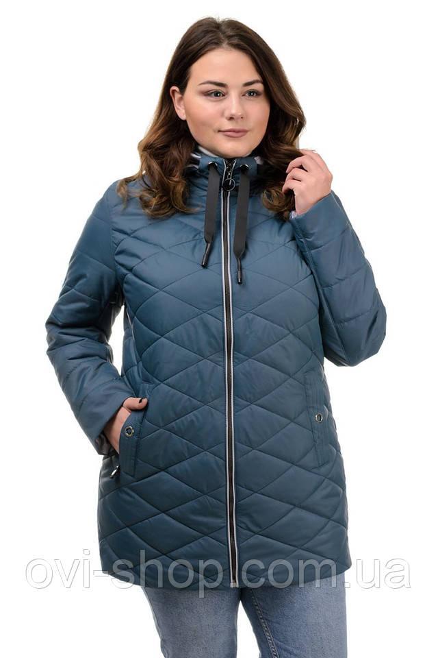 женская куртка красивая