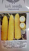 Семена сахарной кукурузы Добрыня,  ДОБРЫНЯ F1. Упаковка 25 000 семян. Производитель Lark seeds.