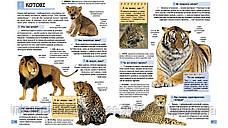 Ілюстрована дитяча енциклопедія у запитаннях і відповідях, фото 2