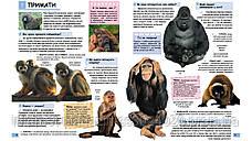 Ілюстрована дитяча енциклопедія у запитаннях і відповідях, фото 3