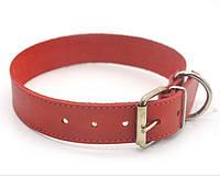 Ошейник для собак кожаный О 4,0/49-60 красный распродажа нестандарт