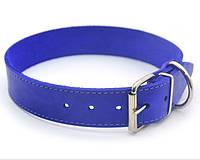 Ошейник для собак кожаный О 4,0/49-60 фиолетовый распродажа нестандарт