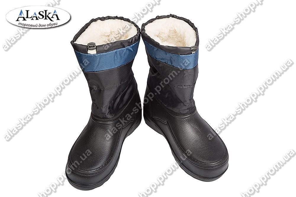 Мужские сапоги (Код: TS полосатик синий)
