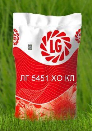 Семена подсолнечника ЛГ 5451 ХО КЛ