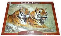 Пазлы castorland 1000 деталей С-100880