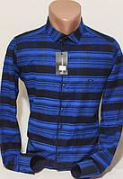 Рубашка мужская кашемир Paul Smith vd-0048 синяя приталенная с длинным рукавом Турция