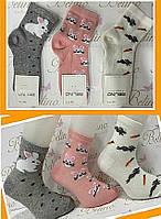 Носки хлопковые для девочек 5-6 лет ТМ Belino 9589612730181