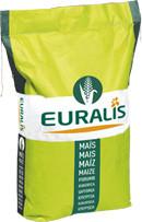 Семена кукурузы Гармониум
