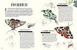 Франсуа Лассер Музей живых насекомых Франсуа Лассер, фото 3