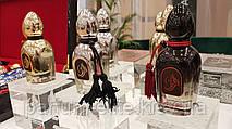 Жіноча східна нішева парфумована вода Arabesque Perfumes Elusive Musk 50ml