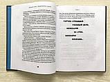 Емец Д. Замурованная мумия Емец Д., фото 4
