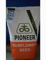 Семена подсолнечника П64ЛС108