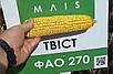 Семена кукурузы Твист, фото 2