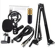 Студийный микрофон Music DJ M 800 Конденсаторный с стойкой активный ветрозащитный Стерео
