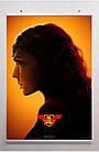 Постер BEGEMOT Супергерои DC Чудо-женщина Диана Wonder Woman 40x61 см (1121188), фото 2