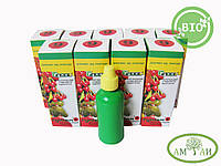 Гумиам 06 для винограда и плодово-ягодных 15мл на 150л воды