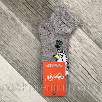 Носки детские х/б махровые Смалий, 20 размер, рисунок 30, 10526