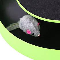 Игра для котов с точилкой для когтей Catch The Mouse, фото 3