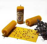 Свічка з вощини з суцвіттями і ефірним маслом лаванди (2 години горіння), фото 2