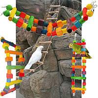 Лестница для попугая