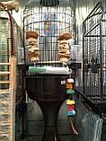Супер прочная, Качеля для крупного попугая, с песочной присадой, фото 4