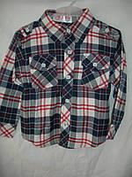 Рубашка детская мальчик r40106070