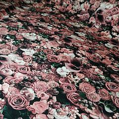 Футер Холодна троянда - 185см. (діджитал)