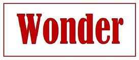 "Интернет-магазин ""Wonder"""