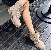 Женские зимние ботинки тимберленды пудра замша натуралки 36-41 размер, зимние ботинки Timberland
