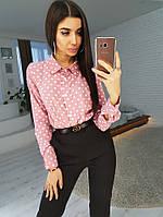 Комплект: Рубашка в горошек и зауженные к низу брюки, фото 1