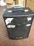 Портативна Акустика QX-1007 на акумуляторі з радіомікрофонами (150W/USB/Bluetooth), фото 2