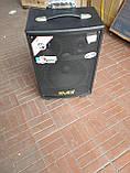 Портативна Акустика QX-1007 на акумуляторі з радіомікрофонами (150W/USB/Bluetooth), фото 4