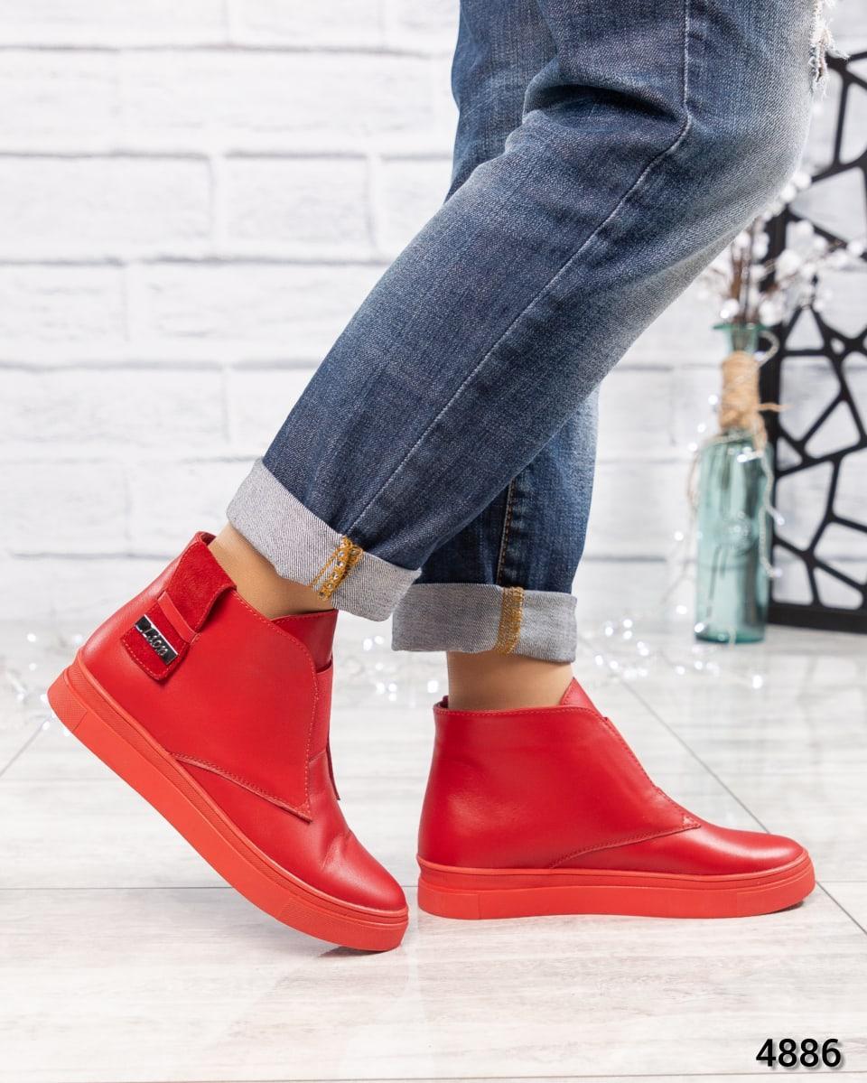 Красные кожаные женские ботинки деми на низком ходу. Размер 36