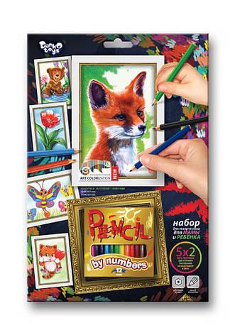 Набор для творчества Pencil by numbers Данко-тойс, фото 2